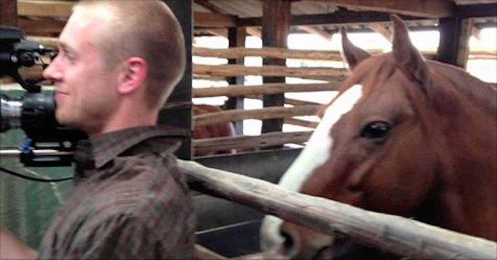 Der Kameramann versucht, nicht zu lachen – doch was das Pferd macht, bringt Tausende zum Lachen