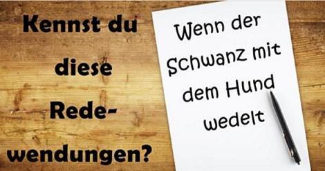 Wie gut kennst du deutsche Redewendungen?