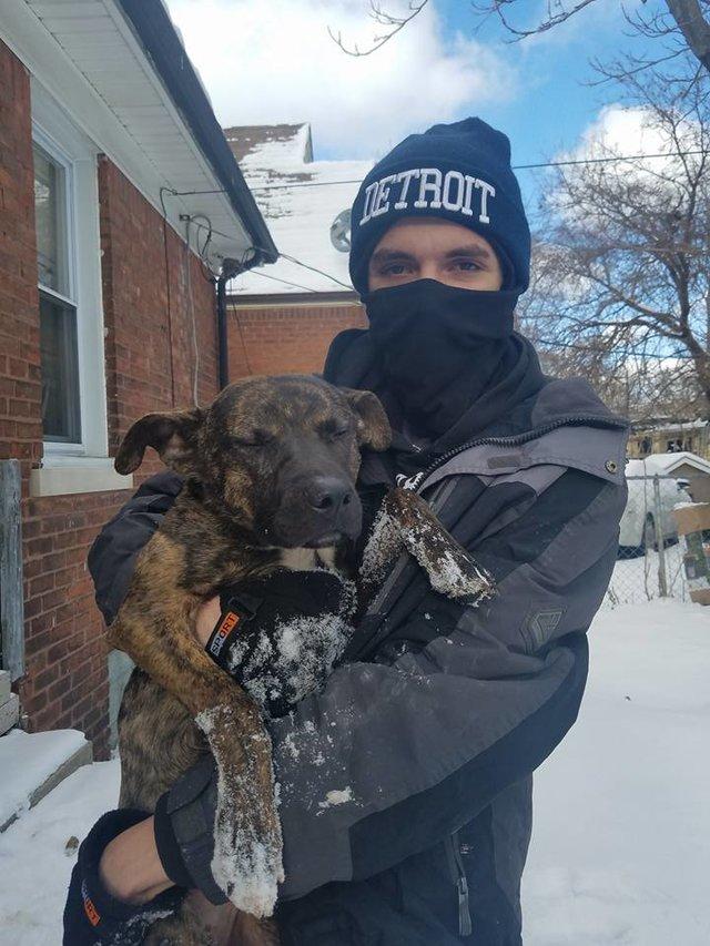 Sie haben den Hund in der Kälte gelassen, damit er sterben würde ...