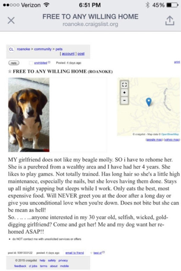 Seine Freundin stellt ihm ein Ultimatum: Ich oder der Hund – mit dieser Antwort hätte keiner gerechnet