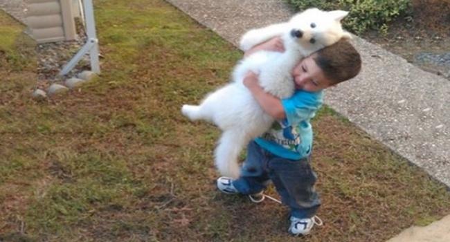 25 Bilder, die beweisen, dass Kinder Haustiere brauchen!