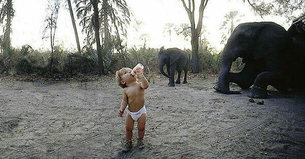 Sie wuchs unter Tieren in der Wildnis auf – nun faszinieren ihre Fotos die ganze Welt