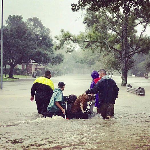 Vom Hurrikan eingeschlossen: Um 2 Leben zu retten, fährt der 22-Jährige ins Auge des Sturms.