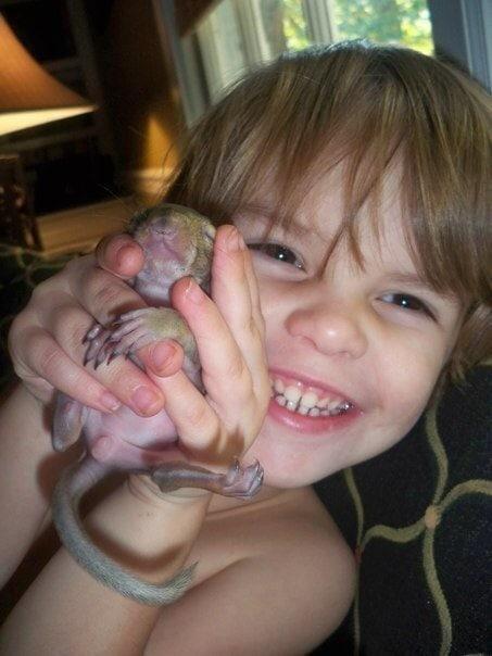 Sie hat ein verwundetes Eichhörnchen gerettet und nun besucht das Eichhörnchen sie seit 8 Jahren, um Danke zu sagen ...