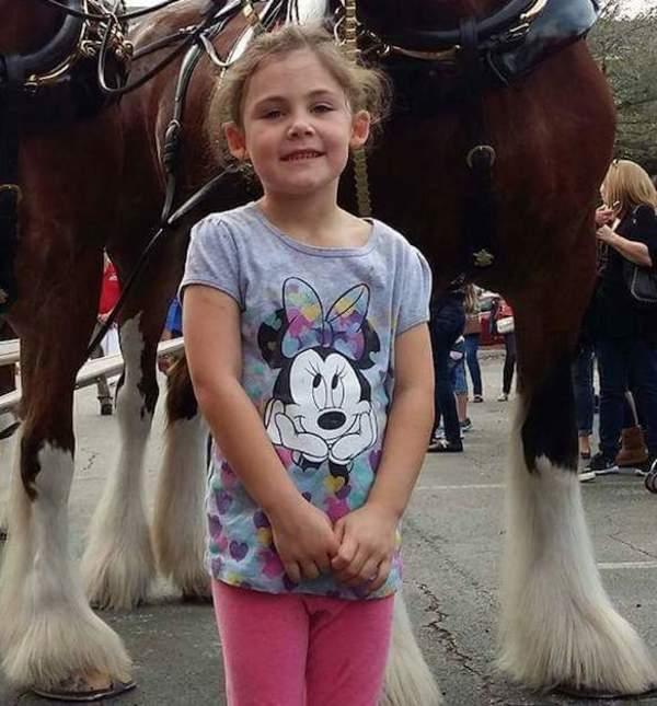 Papa fotografiert seine Tochter vor ein paar Pferden – das Foto, das dabei herauskommt, bringt alle zum Lachen