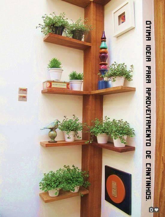 Möchten Sie mal etwas anderes als eine Pflanze in einem öden Topf? Sehen Sie sich hier 11 wunderbare Iden für Pflanzen an!
