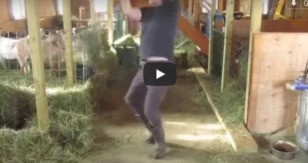 Der Bauer filmt sich selbst in der Scheune – nun lieben ihn Millionen und wir verstehen warum!