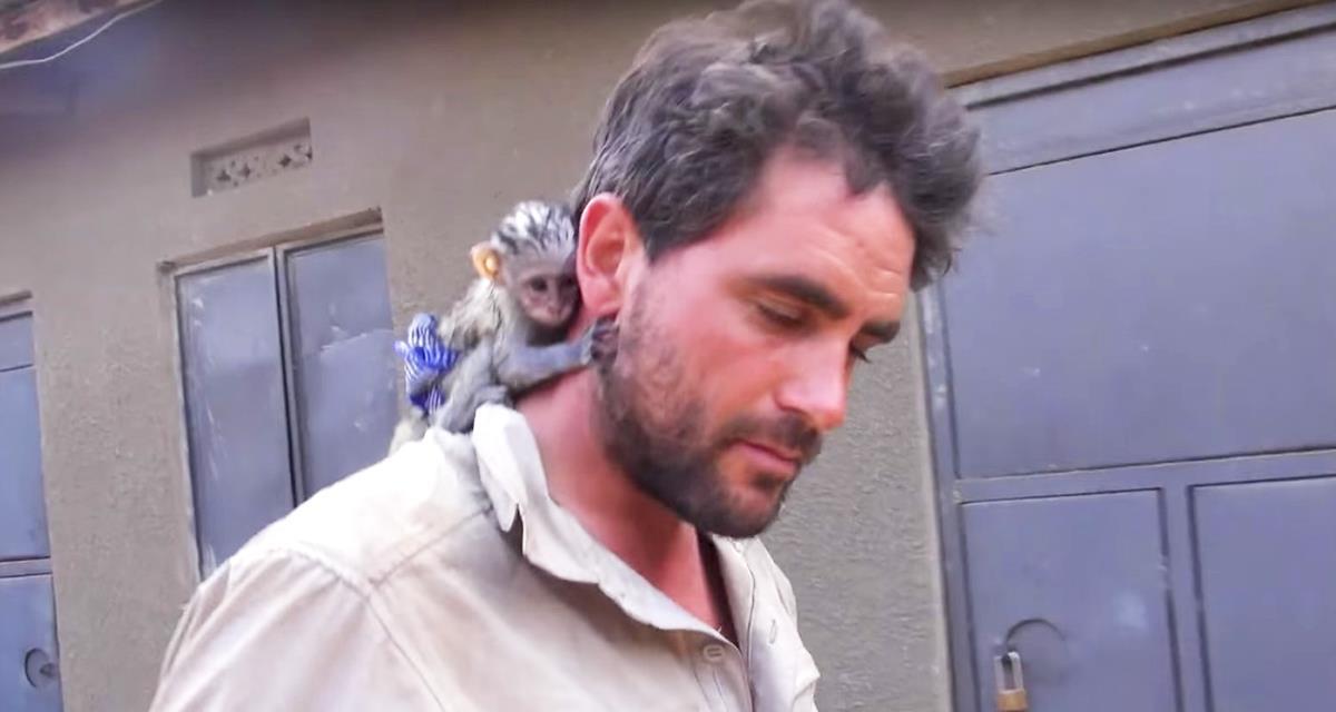 Der Mann rettete den Affen vor wildem afrikanischem Feuer. Schaut ihr nur auf ihre Dankbarkeit!