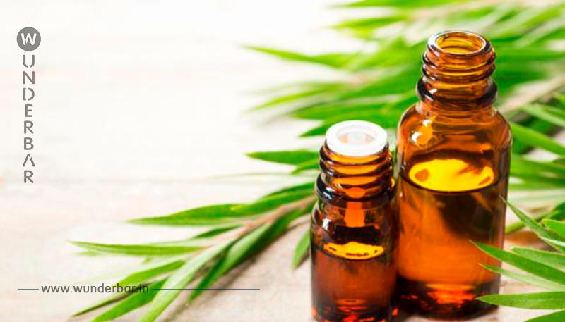 Teebaumöl: 19 überraschende Anwendungsmöglichkeiten