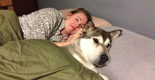 Entspannung und 6 andere Gründe, den Hund ins Bett zu lassen.