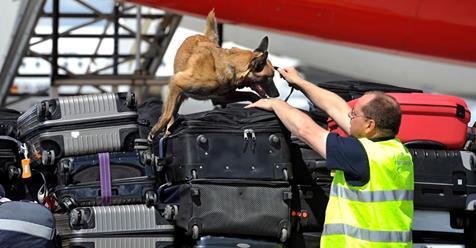 MASCHINEN SOLLEN SCHNÜFFEL-ARBEIT ÜBERNEHMEN! Flughafen schafft  Sprengstoff-Hunde ab