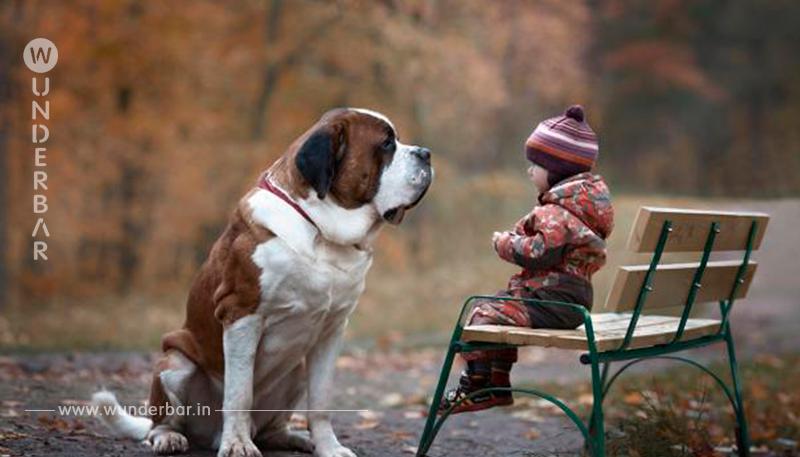 Kinder und ihre tierischen Gefährten