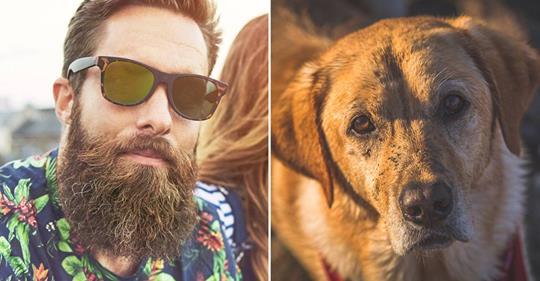 Bärte sind dreckiger als Hundefell – doch muss man deswegen zum Rasierer greifen?