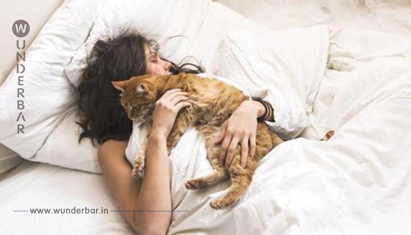 10 Anzeichen dafür, dass Deine Katze Dich wirklich liebt