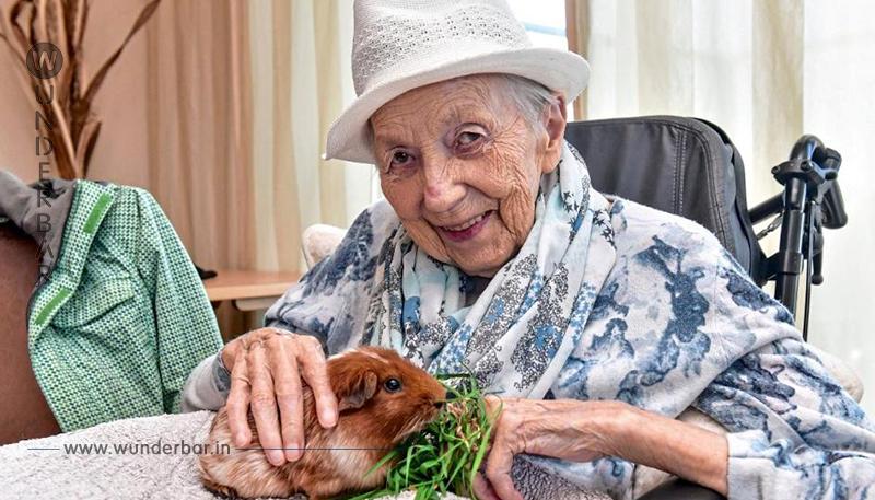 Streichelzoo macht Rentner froh