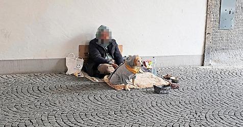 MünchenPolizei ist machtlos: Wie organisierte Bettlerbanden die Qualen der Hunde ausnutzen Teilen