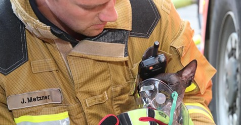 BUNGALOW IN FLAMMEN - FÜNF KATZEN UND ZWEI HUNDE GERETTET Feuerwehr beatmet Tiere mit Sauerstoff