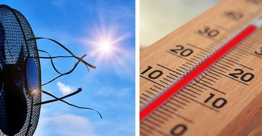 Hitze ist im Anmarsch: So hältst du es bei hohen Temperaturen in deiner Wohnung aus