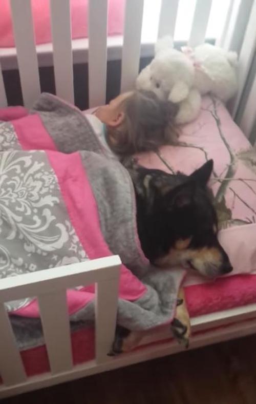 Frau sieht nach ihrem Kind und fängt an es auf Video aufzunehmen, als sie feststellt dass sie ein Nickerchen mit ihrem Hund macht