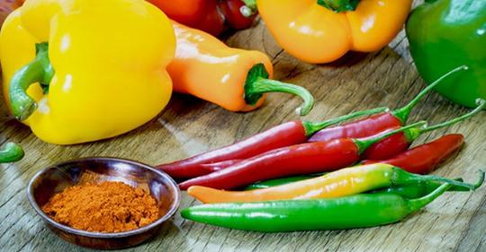 Feurig, bunt, gesund: Paprika ist ein Allroundtalent