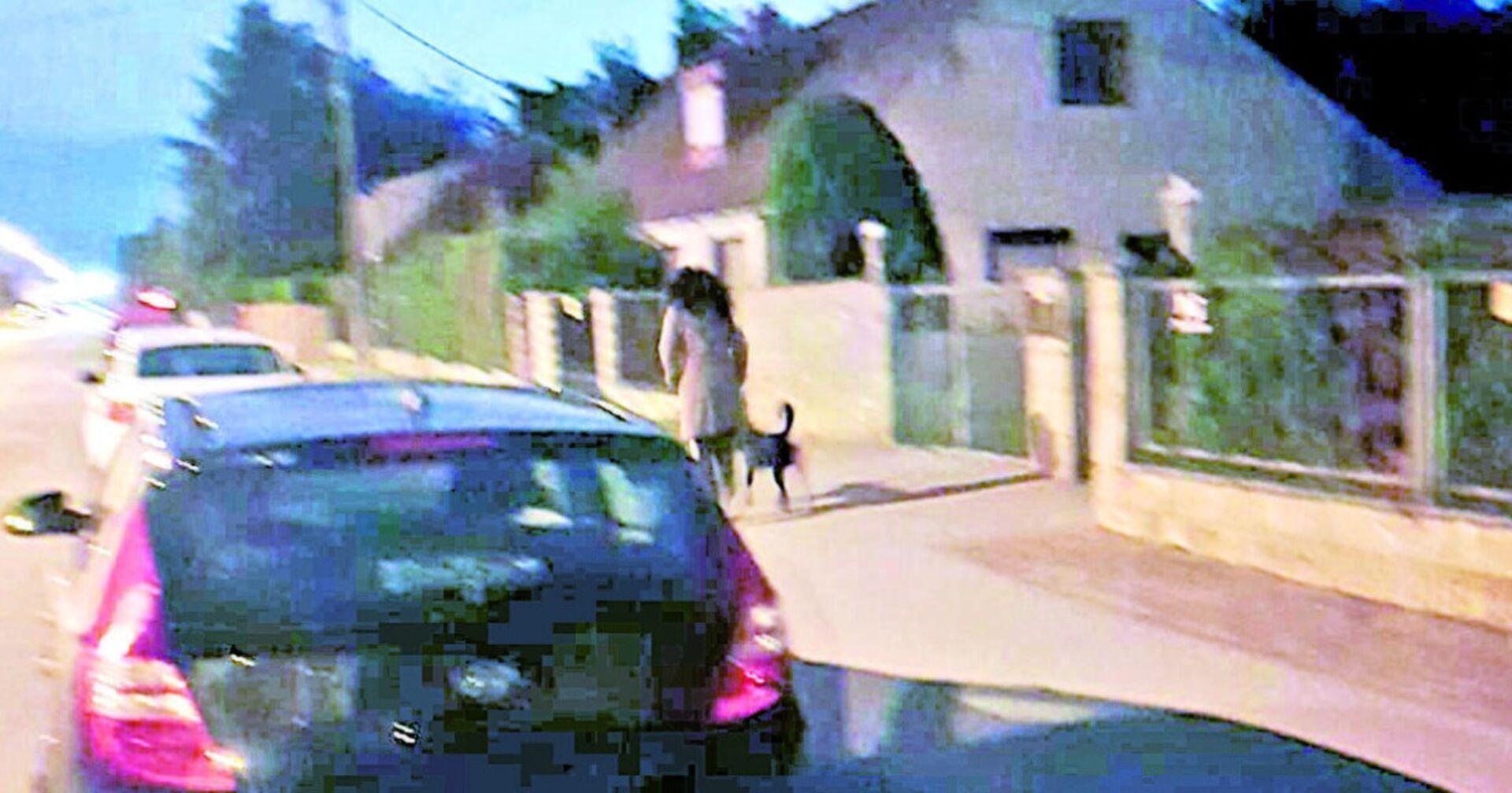 20000 Euro Strafe fürs Gassi Gehen: Labrador Frauchen sorgt für Wut und Ärger!