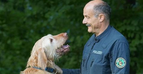 Polizeihund rettet 7 Menschenleben. Sein Renteneintrittsalter macht sprachlos