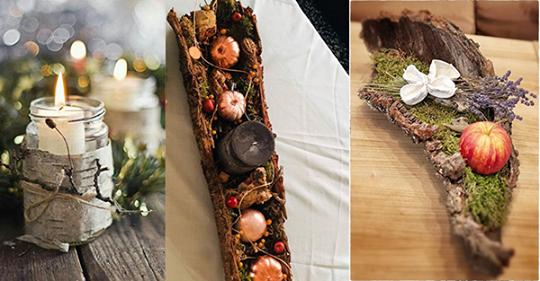 Baumrinde holen Sie sich kostenlos aus der Natur damit Sie die schönsten Herbst- und Winterdeko machen können!