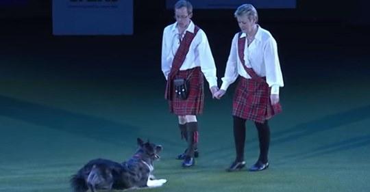 Paar bereitet sich auf ihren Riverdance  Auftritt vor, als ein Hund ihnen komplett die Show stiehlt