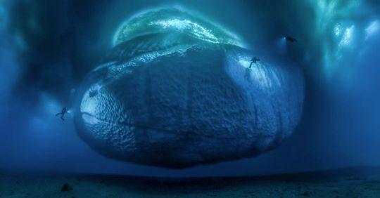 So haben Sie die Antarktis noch nie gesehen