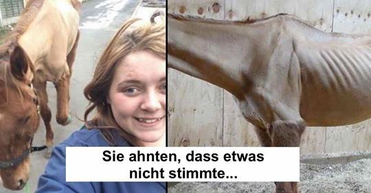 Tierschützer überführen Pferde-Quälerin durch Selfie