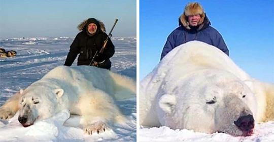 Trophäenjäger posieren vor getöteten Eisbären: Jagd-Tourismus bedroht gesamte Tierart
