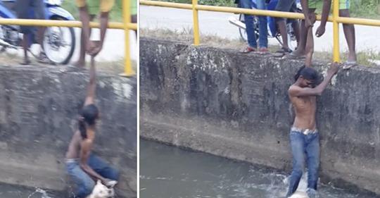 Junger Mann hört, wie etwas im Wasser des Kanals wimmert – springt hinein, um ertrinkenden Hund zu retten