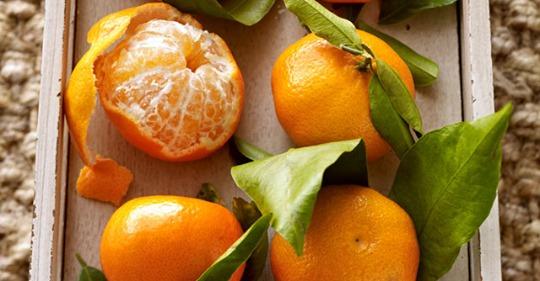 Mandarine - kleine, süße Zitrusfrucht
