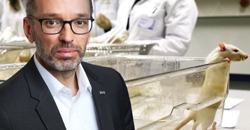Corona Lügen entlarvt: Linke wollen Kickl aus ORF Debatten aussperren