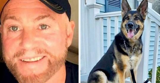 Plötzlich von einem Schlaganfall heimgesucht, wird er von dem deutschen Schäferhund gerettet, den er nur wenige Monate zuvor adoptiert hatte