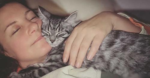 Tierische Therapeuten: Haustiere bei Depressionen