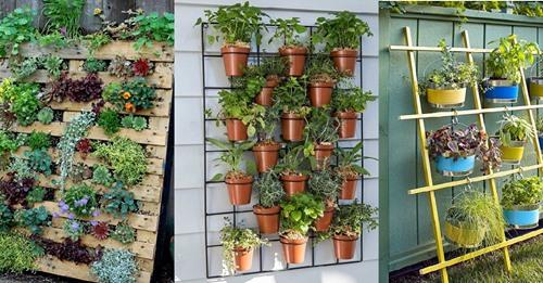 Nicht so viel Platz im Garten oder auf dem Balkon? Gestalten Sie einfach einen vertikalen Garten!