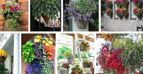 Schöne hängende DIY-Pflanzgefäße, um Ihre Terrasse und Garten noch schöner zu gestalten.