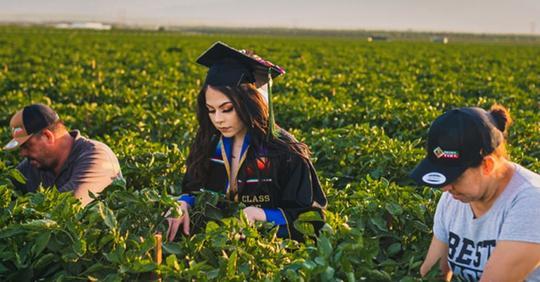 Eine Studentin ehrt ihre Eltern, indem sie ihre Abschlussfotos auf den Feldern schießt, auf denen ihre Familie arbeitet