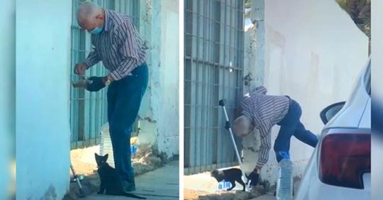Ein alter Mann füttert jeden Tag eine Straßenkatze in Not: Das Video geht viral