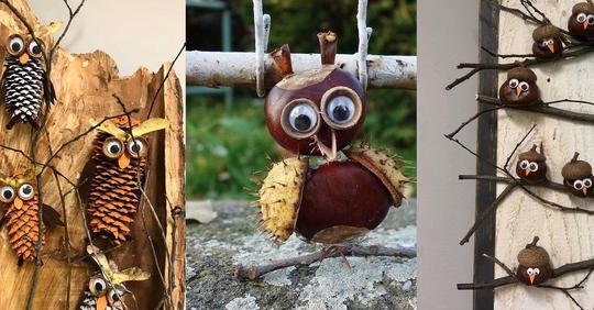 Verrückt nach Eulen? Basteln Sie sich die lustigste Eulendekoration mit Materialien aus der Natur!