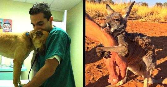 11 süße Tierbilder von Tieren und ihren Rettern